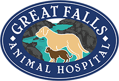 Great Falls Animal Hospital